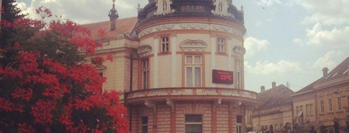 Sremska Mitrovica is one of Tanja : понравившиеся места.
