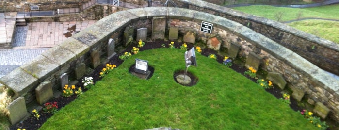 Dog Cemetery is one of When you travel.....
