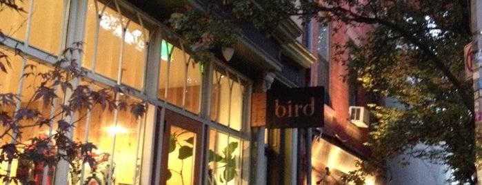Bird is one of Brooklyn, New York.