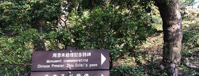 Arashiyama Park is one of JPN.