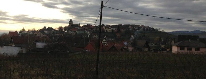 Zellenberg is one of Alsace.