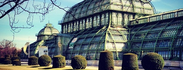 Palmenhaus Schönbrunn is one of Carlさんのお気に入りスポット.