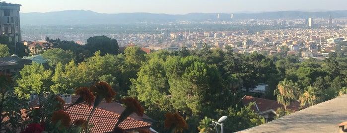Hamzabey is one of Bursa   Osmangazi İlçesi Mahalleleri.