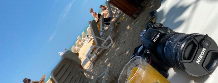 Bar da Praia - Club Med is one of Locais curtidos por Milena.