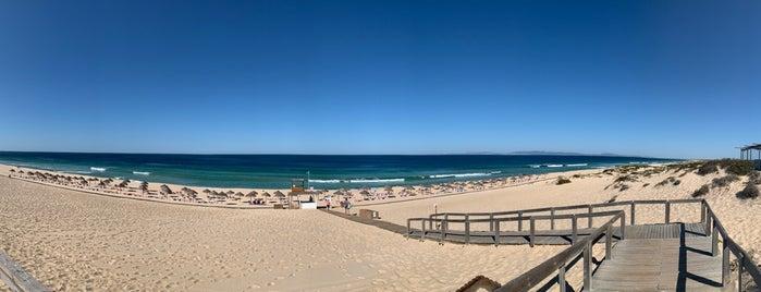 Praia do Pego is one of สถานที่ที่ Baris ถูกใจ.