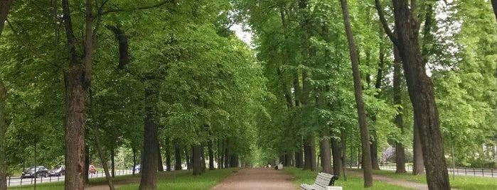 Октябрьский бульвар is one of สถานที่ที่ Tanya ถูกใจ.