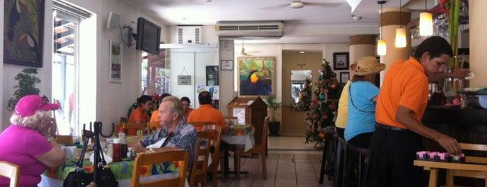 Freddy's Tucan is one of Destination Puerto Vallarta.