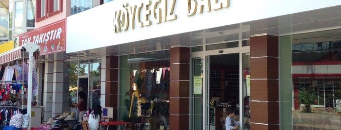 Köyceğiz Balı is one of Köyceğiz.