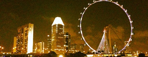 The Singapore Flyer is one of Lion City.
