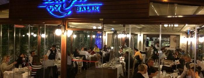 Parga Balık is one of İstanbul Meyhaneleri.