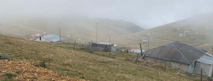 Çıkrıkdüzü Yaylası is one of สถานที่ที่ Bengü Deliktaş ถูกใจ.