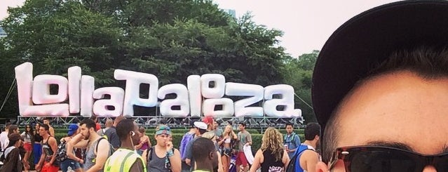 Lollapalooza is one of Bing's Ultimate Music Festival Guide.