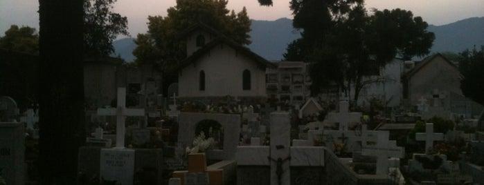 Cementerio de Santa Cruz is one of Orte, die Andres gefallen.