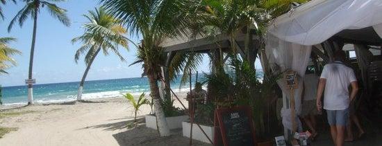 New Cap is one of Boire un verre en Martinique.