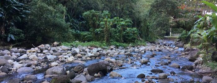 Grande Rivière is one of Lieux de baignade en eau douce de Martinique.