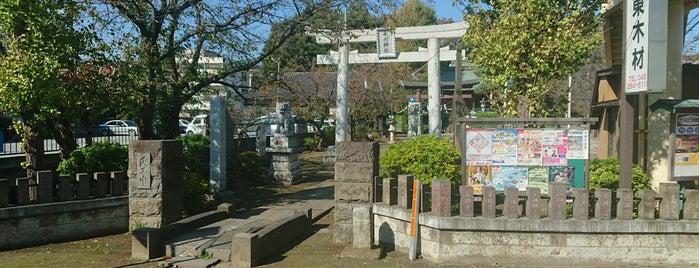 東本郷氷川神社 is one of 神輿で訪れた場所-1.