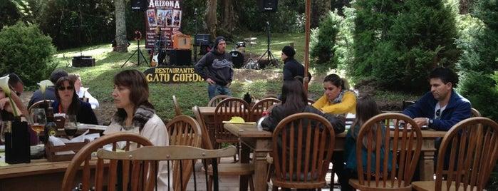 Gato Gordo is one of Esta é minha Campos do Jordão.