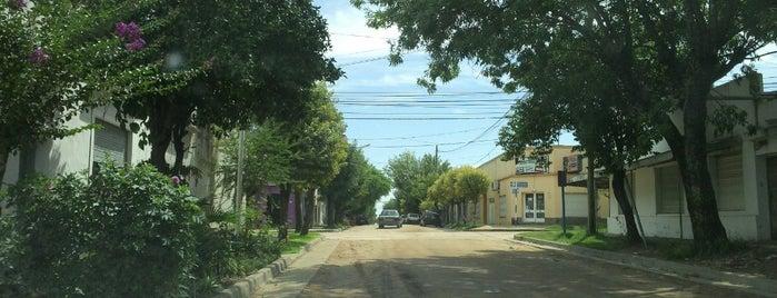 San José is one of Colón y alrededores.