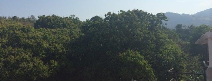 Sierra Nevada de Santa Marta is one of My Little Corner of the World.