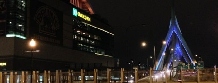 TD Garden is one of NHL (National Hockey League) Arenas.