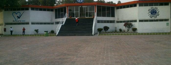 Club Deportivo Familia Volkswagen de México is one of Tempat yang Disukai Sandy.