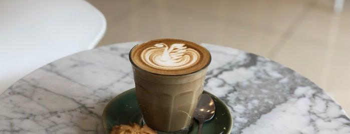 Piyo Coffee Brewer is one of 04 - ตามรอย.