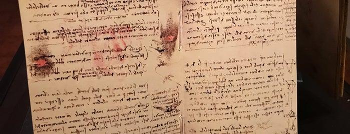 Museo Leonardo Da Vinci is one of Cüneyt'in Beğendiği Mekanlar.