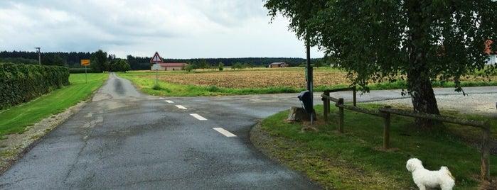 Landweg is one of Ulm.