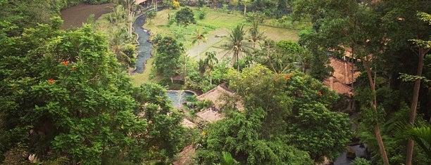 The Royal Pita Maha Resort Bali is one of Ubud.