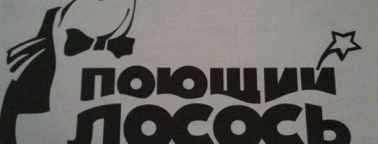Поющий Лосось is one of Кафе.