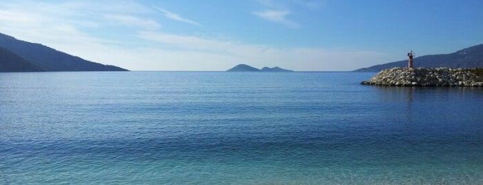 kalkan plajı is one of Carolineさんのお気に入りスポット.