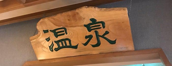 正徳寺温泉 初花 is one of Lugares favoritos de モリチャン.