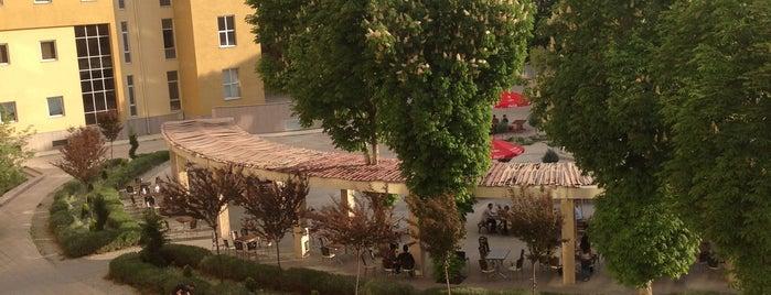 Ahmet Keleşoğlu Eğitim Fakültesi is one of Orte, die 🃏🃏 gefallen.