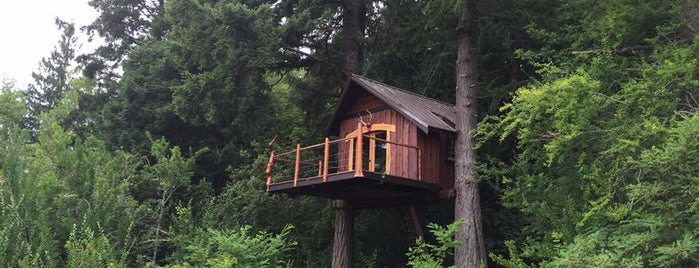Treehouse Island Zip Line Adventures is one of Off-Grid Birthday.