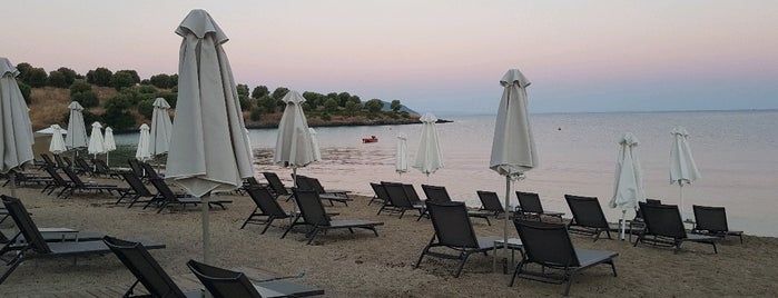 Kochi Beach is one of Greece.