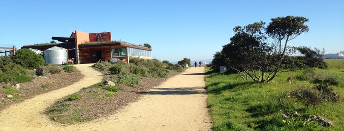 The Ecocenter at Heron's Head Park is one of Lugares guardados de Jenn.