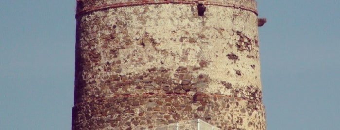 Torre del Catalán is one of Torres Almenaras en el Litoral de Andalucía.