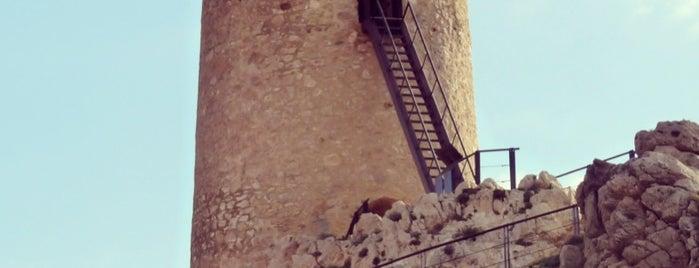 Torre del Pirulico is one of Torres Almenaras en el Litoral de Andalucía.