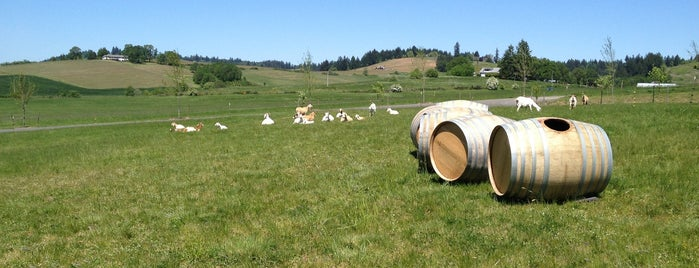 Solena and Grand Cru Estates is one of Oregon Wining.