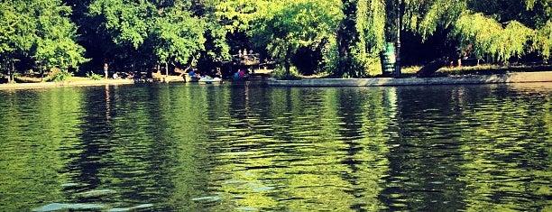 Lacul Cișmigiu is one of Irenさんの保存済みスポット.