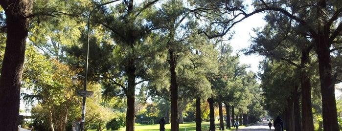 Facultad de Agronomía (UBA) is one of Tempat yang Disukai Diego Alfonso.