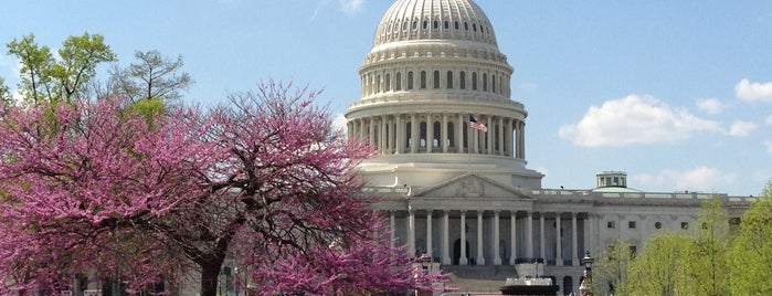 United States Capitol is one of DC Monuments Run.