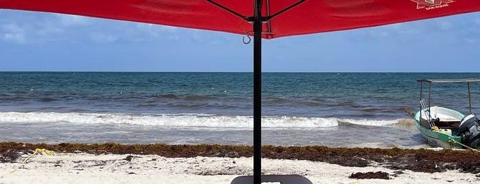 Playa Las Palmas is one of Tulum.
