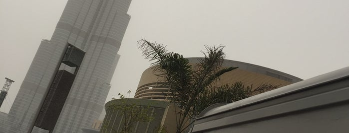 Grind coffee is one of Dubai, UAE.