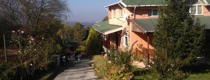 Ekolojik Sağlıklı Yaşam Köyü Ketenciler is one of Locais salvos de Selin.
