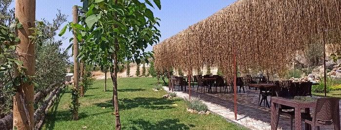 Yalçın Babaoğlu Çiftliği is one of Gespeicherte Orte von Ahmet.