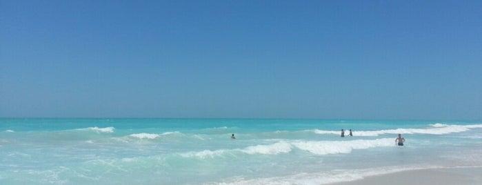 Saadiyat Public Beach managed by BAKE is one of สถานที่ที่ Baha ถูกใจ.