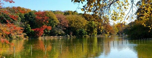 Zenpukuji Park is one of 無題.