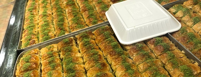 Albasha Restaurant is one of Northern Borders.