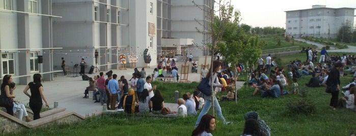 Hacettepe Üniversitesi  Güzel Sanatlar Fakültesi is one of Locais curtidos por Nazanin.